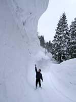 凄い雪だよ大変だよ