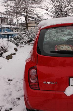 いきなりの雪です