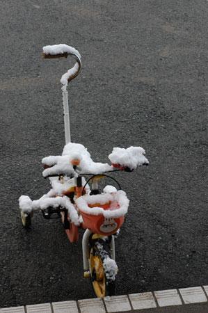 自転車が凍えています。