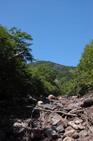 目的地は山の真ん中にある土砂崩れが起きた場所。
