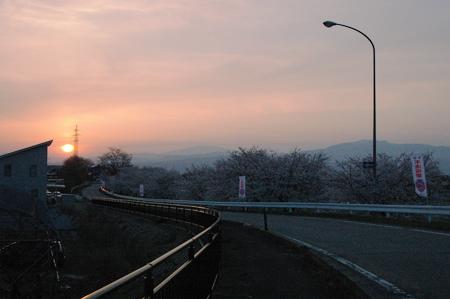 桜に月山、葉山